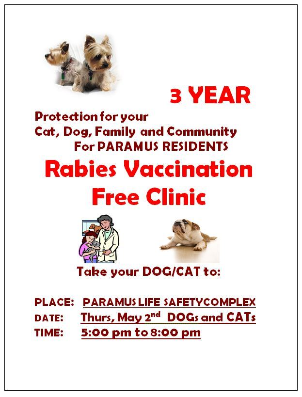 RABIES_POSTER